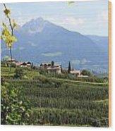 Tyrolean Alps And Vineyard Wood Print