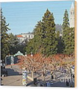 Uc Berkeley . Sproul Plaza . Sather Gate And Sather Tower Campanile . 7d10000 Wood Print