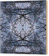 Uknown02 Wood Print