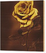 ROSE CANVAS LIGHT SEPIA FLORAL ARTWORK WALL PICTURE A1