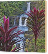 Umauma Falls Big Island Hawaii Wood Print