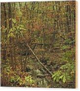 Unami Creek Feeder Stream In Autumn - Green Lane Pa Wood Print