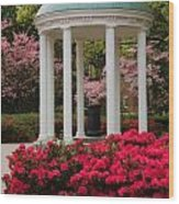 Unc Well In Spring Wood Print