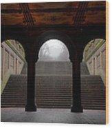 Under Bethesda Wood Print
