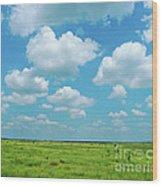 Under The Texas Sky Wood Print