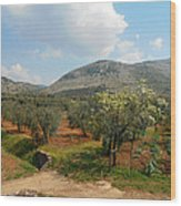 Under The Tuscan Skies Wood Print