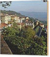 Under The Tuscan Sun Wood Print