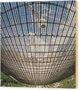 Underside Of Arecibo Radio Telescope Wood Print