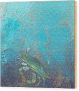 Underwater Blue Crab Wood Print