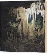 Underwater Cave Wood Print