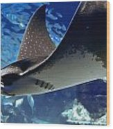 Underwater Flight Wood Print by DigiArt Diaries by Vicky B Fuller