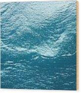 Underwater Image Wood Print