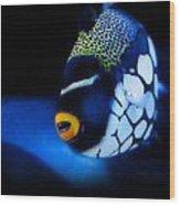 Underwater Surprises 1 Wood Print