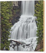 Undine Falls Yellowstone National Park Wood Print