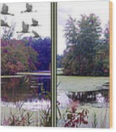 Unicorn Lake - Cross Your Eyes And Focus On The Middle Image Wood Print