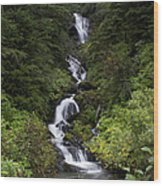 Unnamed Alaskian Falls Wood Print