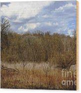 Unspoiled Prairie Landscape Wood Print
