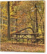 Until Spring 2 Wood Print