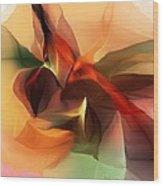 Untitled 100612 Wood Print