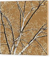 Untitled Tree Wood Print by Carrie Kouri