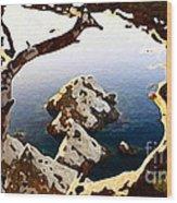 Untouched Coast Wood Print