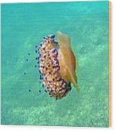 Unwelcome Jellyfish Wood Print