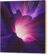 Up Close And Purple Wood Print