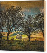 Up On The Sussex Downs In Autumn Wood Print
