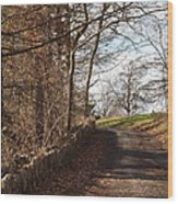 Up Over The Hill Wood Print