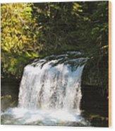 Upper Butte Creek Falls 3 Wood Print