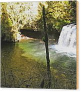 Upper Butte Creek Falls And Plunge Pool Wood Print