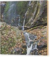 Upper Dark Hollow Falls In Shenandoah National Park Wood Print