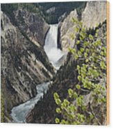 Upper Falls Of The Yellowstone River Wood Print