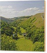 Upperdale From Monsal Head Wood Print