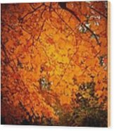 Upperville Leaves Wood Print