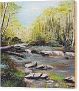 Upstate South Carolina Trout Stream Wood Print