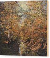 Upstream Wood Print
