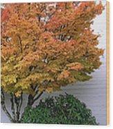 Urban Fall  Wood Print