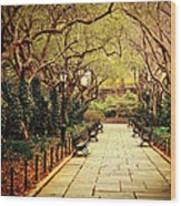 Urban Forest Primeval - Central Park Conservatory Garden In The Spring Wood Print by Vivienne Gucwa