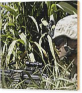 U.s. Marine Maintains Security Wood Print