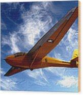 U.s. Marines Glider Wood Print