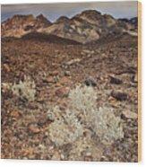 Usa, California, Death Valley, Barren Landscape Wood Print