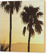 Usa, California, Palm Springs, Palm Trees Silhouetted At Sunset Wood Print