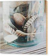 Usa, New York State, New York City, Brooklyn, Shells In Jar Wood Print by Jamie Grill