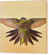 Usaf Hummingbirds Wings Wood Print