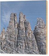 Vajolet Towers, Dolomites, Catinaccio Range Wood Print