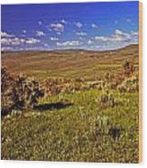Valley At Fossil Butte Nm Wood Print