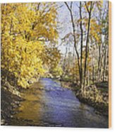 Valley Forge Creek In Autumn Wood Print