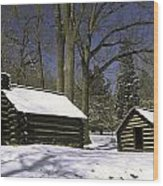 Valley Forge Winter Wood Print