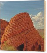 Valley Of Fire Nevada - Beehives Wood Print